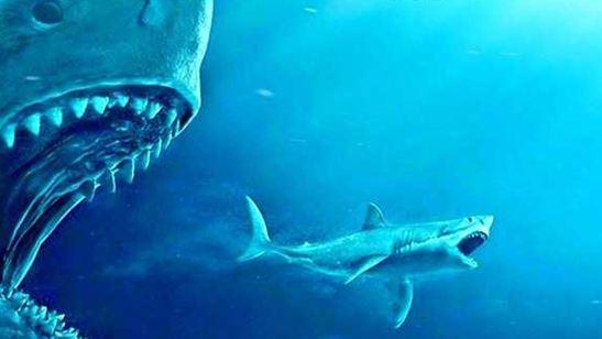 ABD Box Office Zirvesinde Köpek Balığı İstilası!