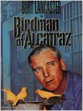 Alkatraz Kuşçusu