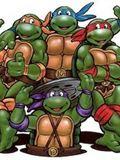 The Teenage mutant ninja turtles 2003