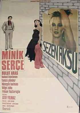 Minik Serçe : poster