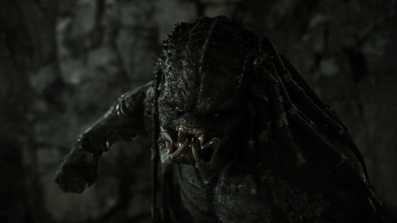 The Predator : Fotograf