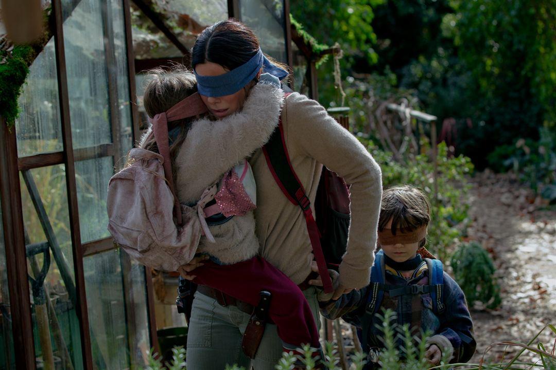 Bird Box : Fotograf Sandra Bullock