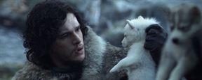 Game Of Thrones'un Kurtları ve Kaderleri!